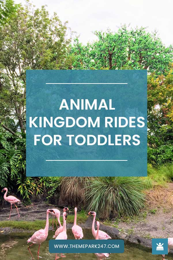 Animal Kingdom rides for toddlers